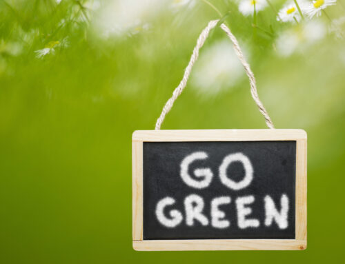 Creating Green Restaurants: Eco-Friendly Practices You Should Follow